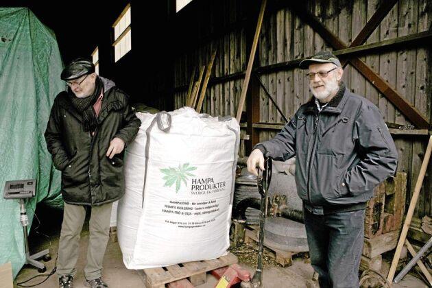 Hampakamp. Roger Olofsson och Göran Andersson i Grästorp i Västergötland vill se mer odling av hampa i Sverige. De säljer främst hampafibern som isolering till byggindustrin. Vedämnena som blir över säljs som djurströ till smådjursbutiker i hela Norden.