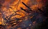 Militär markpersonal bekämpar Ale-branden