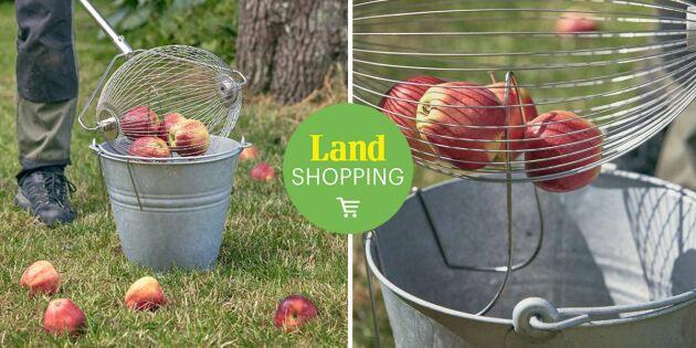 Äppelplockaren – ergonomiskt redskap för att samla in fallfrukt