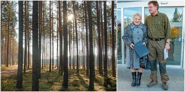 Tjänade en miljard på skogsaffärer i Lettland