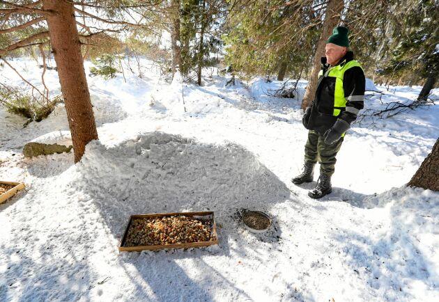Karl-Erik Larsson delar ut mat till rådjuren varje morgon och eftermiddag.