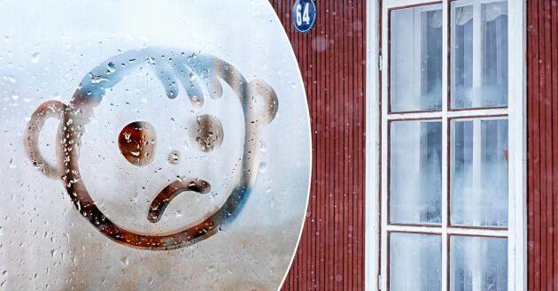 Orolig över imma på fönstren? Lär dig mer så kan du fixa det.