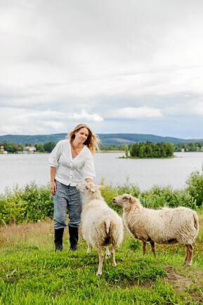 De nio Ryafårs-tackorna och deras 20 lamm håller markerna ner mot Byasjön öppna. De möter förväntansfullt upp när Lena kliver in i hagen.