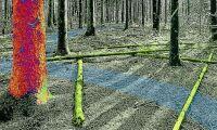 416 miljoner till mer hållbart skogsbruk