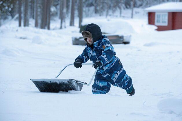 Sonen Leon i skottaratagen med sin miniversion av en snösläde.