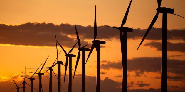 Vindkraften tar energimarknaden med storm