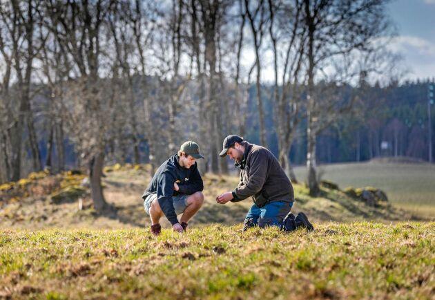 De fem syskonen har olika roller i företaget: Filip Persson, 19 (till vänster), är traktor- och maskinansvarig medan Kalle Persson, 24, är växtodlingsansvarig och gärna tar ett ryck i skogen.