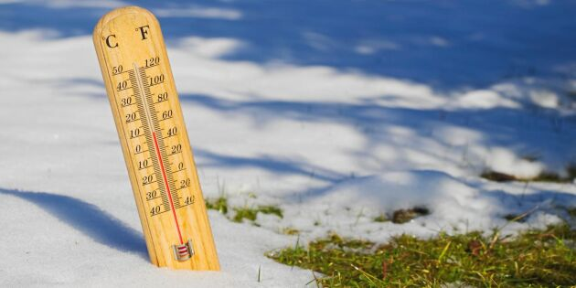 Rekordvår i Karlshamn – varmaste februaridagen sedan 1934