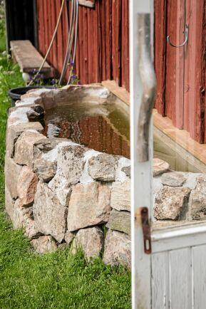 Vattensamlaren utanför Johnnys växthus har han själv murat upp. Det rena och fina vattnet används till planteringarna.