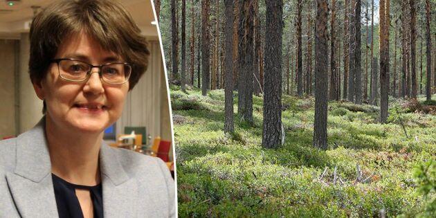 Hård kritik mot Skogsutredningen