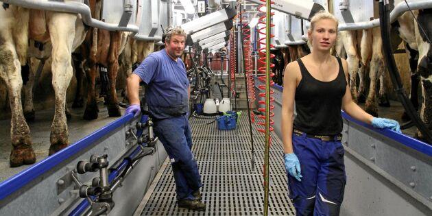 Rationellt fiskbensstall ersatte mjölkrobotar