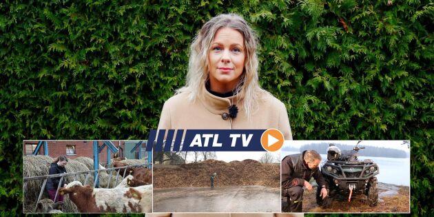 ATL TV: Ett steg närmare förarlöst i skogen