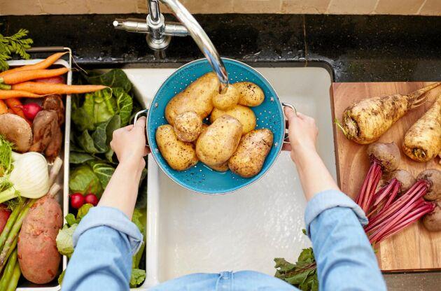 Rödbetor, brysselkål och äpplen. Svenska råvaror du kan äta i vinter.