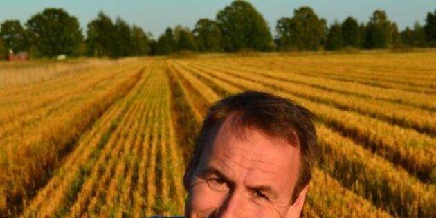 Öppet brev till landsbygdsministern – så ska rovdjursangreppen minskas
