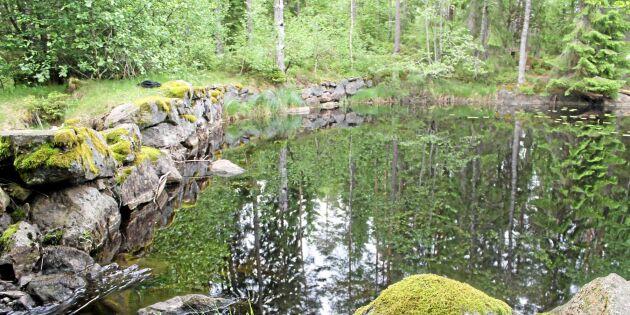 Sveaskog tar inte hänsyn till kulturlämningar