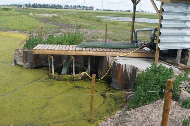 Bevattningspumpen tar vatten från den djupa dammen. Här finns ett förråd på cirka 50000 kubikmeter vatten. Ungefär lika mycket finns på andra sidan i våtmarksdammarna. Vid behov kan bevattningsdammen också fyllas på med vatten från Helgeå.