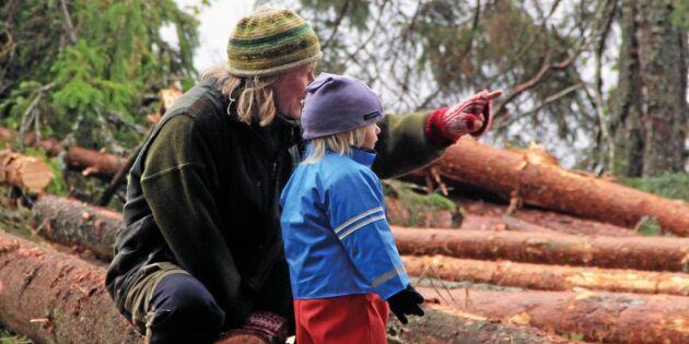 Ge skogen lite extra tid under helgerna
