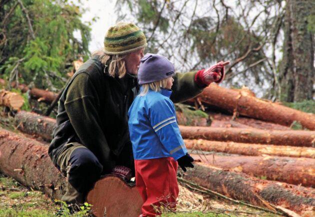 Passa på att vara med familjen i skogen när julen och nyår erbjuder lite extra ledighet.