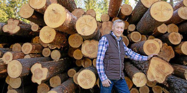 Satsning på KL-trä tar ytterligare steg framåt