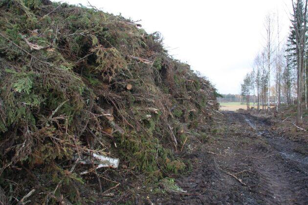 Grot kan vara ett alternativ till torv i trädgården. Sveaskog, Econov, BioEndev och Processum ska testa om det går att använda torv i stället.