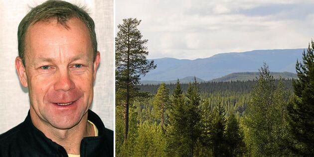 Sveaskog vill sälja mark för hundratals miljoner