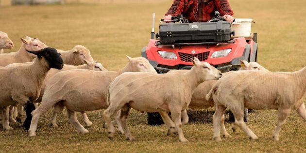 """""""Skattesmäll hotar bönder med fyrhjuling"""""""