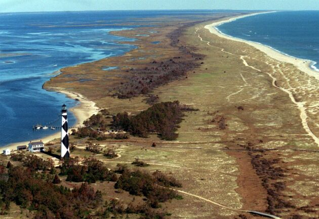 Korna tog sig till Cape Lookout National Seashore.