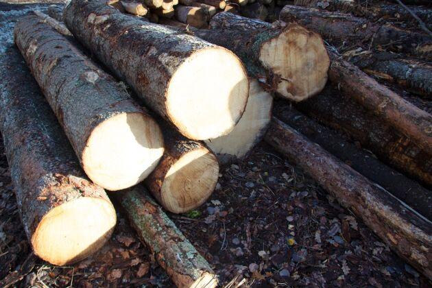Pengar på skogskonton och stormar de senaste åren gör att timmerflödet är dåligt i södra Sverige.