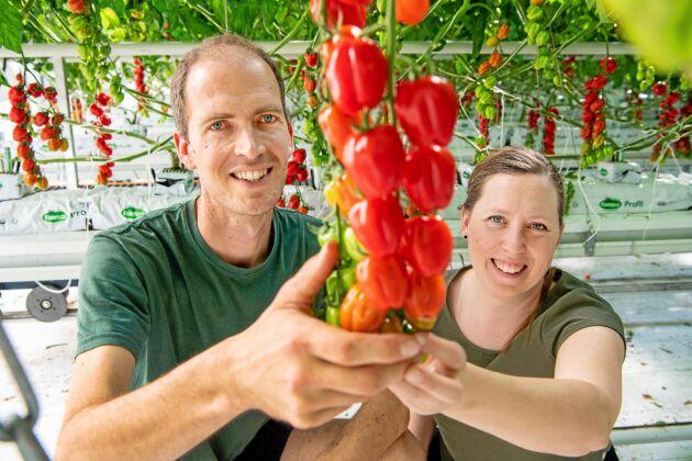 Peter och Anette van Schie tror benhårt på att kvalitet och mångfald kan slå pris. Konsumenter som vänjer sig vid smakrika tomater blir ofta trogna kunder.