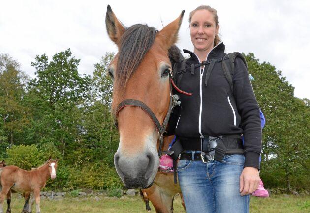 Sara Rosqvist har valt att satsa på köttlådor med hästkött, främst kött från ardenner, och hon upplever en stadigt växande efterfrågan på hästkött.