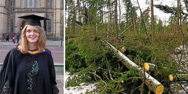 Bristande riskbedömning kan stå skogsägare dyrt