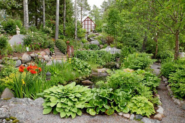 Trädgården har fått namnet Lilla Madeira, med inspiration från blomsterön Madeira.