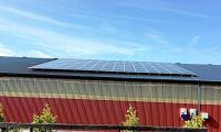 Studie: Solceller en lönsam affär