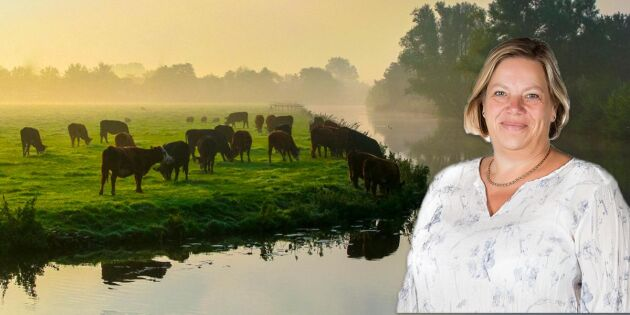 Efter corona: Kanske kommer lantbruket att uppvärderas