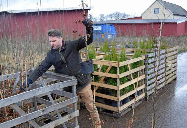 Anläggningsväxter är ett nytt ben i verksamheten som kan bli storskalig.