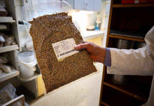 Säkerhet. Av varje leverans spannmål sparas ett prov i minst 12 månader för att säkra spårbarheten för varje parti mjöl.