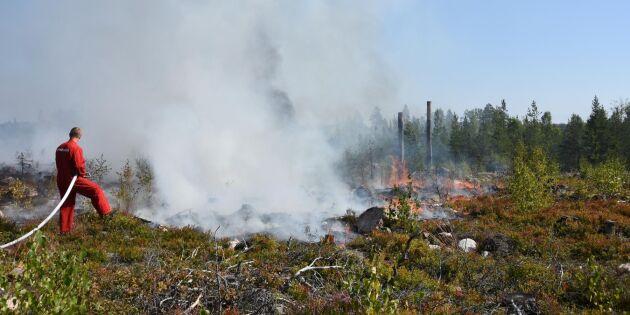 Nattjobbande skogsarbetare minskar brandrisken