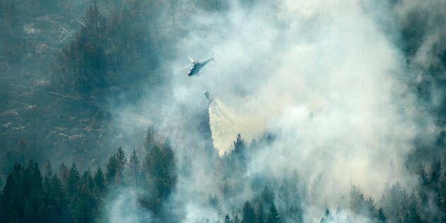 Så vill MSB snabbrusta mot skogsbränder