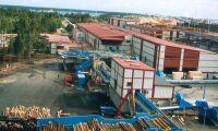 Södra ökar sågandet igen – 30 nya jobb i Mönsterås