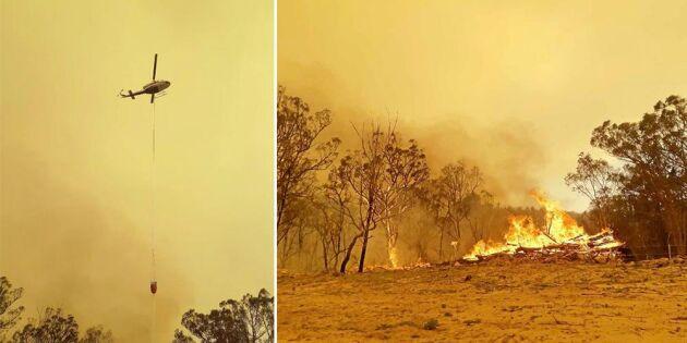 Lantbrukare: Det bara fortsätter brinna