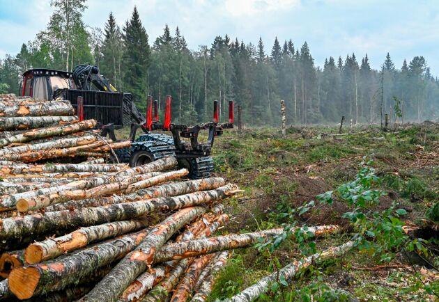 Det kommer att ta omkring ett halvår att uppgradera GIS-mjukvaran i Sveaskogs omkring 600 maskiner.