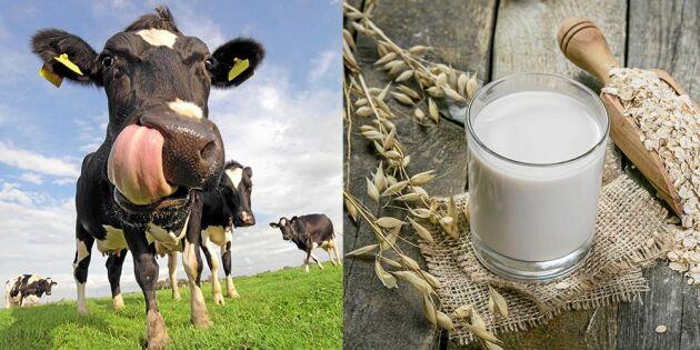 Experten om mjölkkriget: Sluta ställ komjölk och havredryck mot varandra