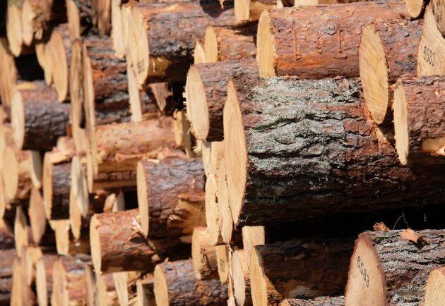 Lagren av barrsågtimmer, massaved och massaflis är ovanligt stora för årstiden.