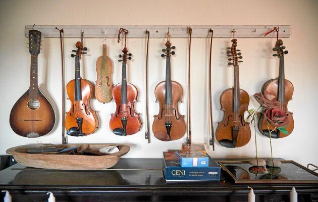 Gustavs fiolsamling. Att spela folkmusik är hans stora fritidsintresse, som hinner ägna sig lite mer åt under vintern.
