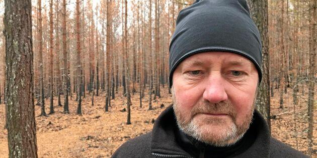 """Skogsägare: """"Jag får börja om från noll"""""""