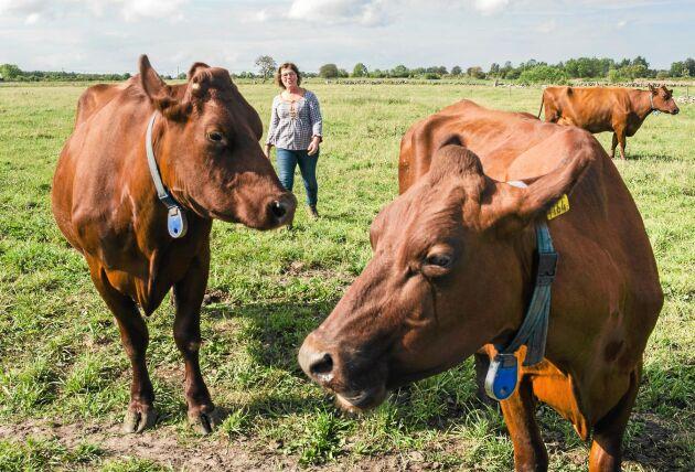 Som 25-åring köpte Kerstin sin farbrors 24 kor vilket blev starten för hennes bana som mjölkbonde.