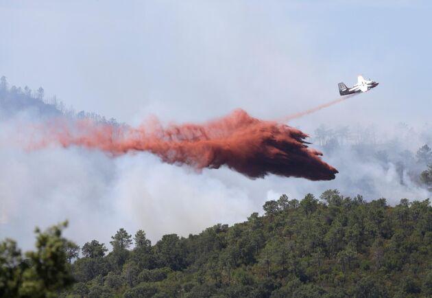 Ett flygplan kämpar mot en skogsbrand längs den franska Rivieran 2017. Arkivbild.