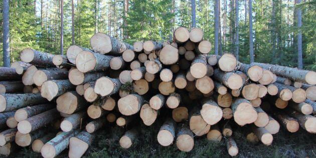 Regeringen måste säkra virkesflödet från skogen