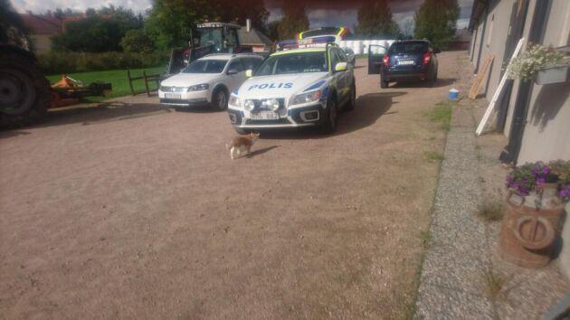 Poliserna var några mil bort och kunde komma efter en halvtimme för att prata med de personer som stod i mjölkrummet.