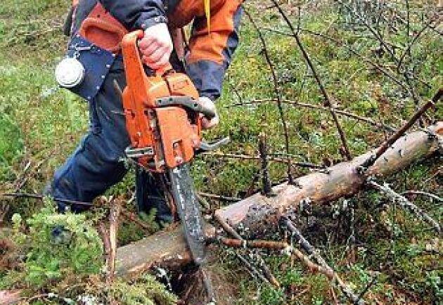 Yrkesverksamma inom jord och skog utsatta för arbetsplatsolyckor.